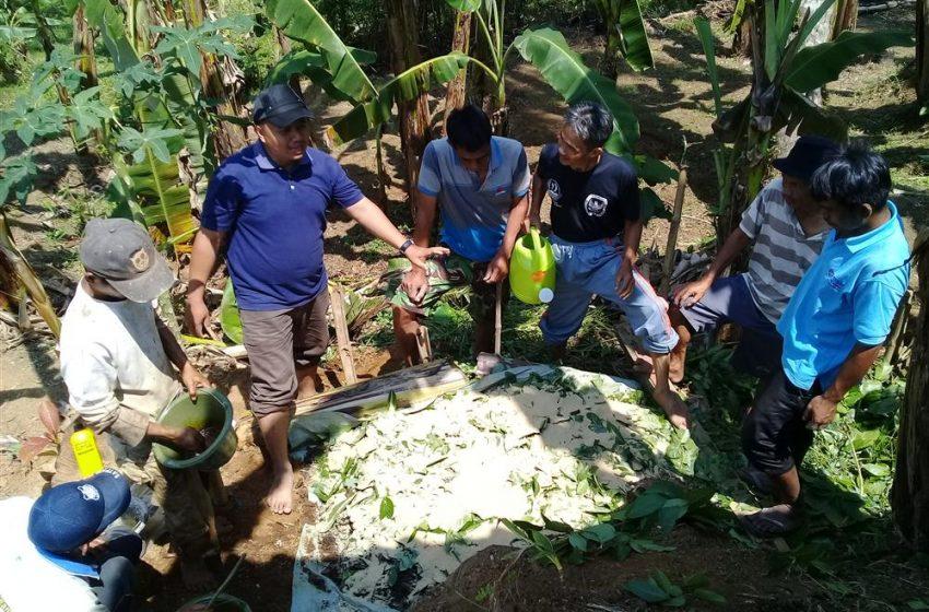 Program Pengembangan Pertanian Terintegrasi (Integrated Farming System-IFS) di Sukabumi Tahun 2018